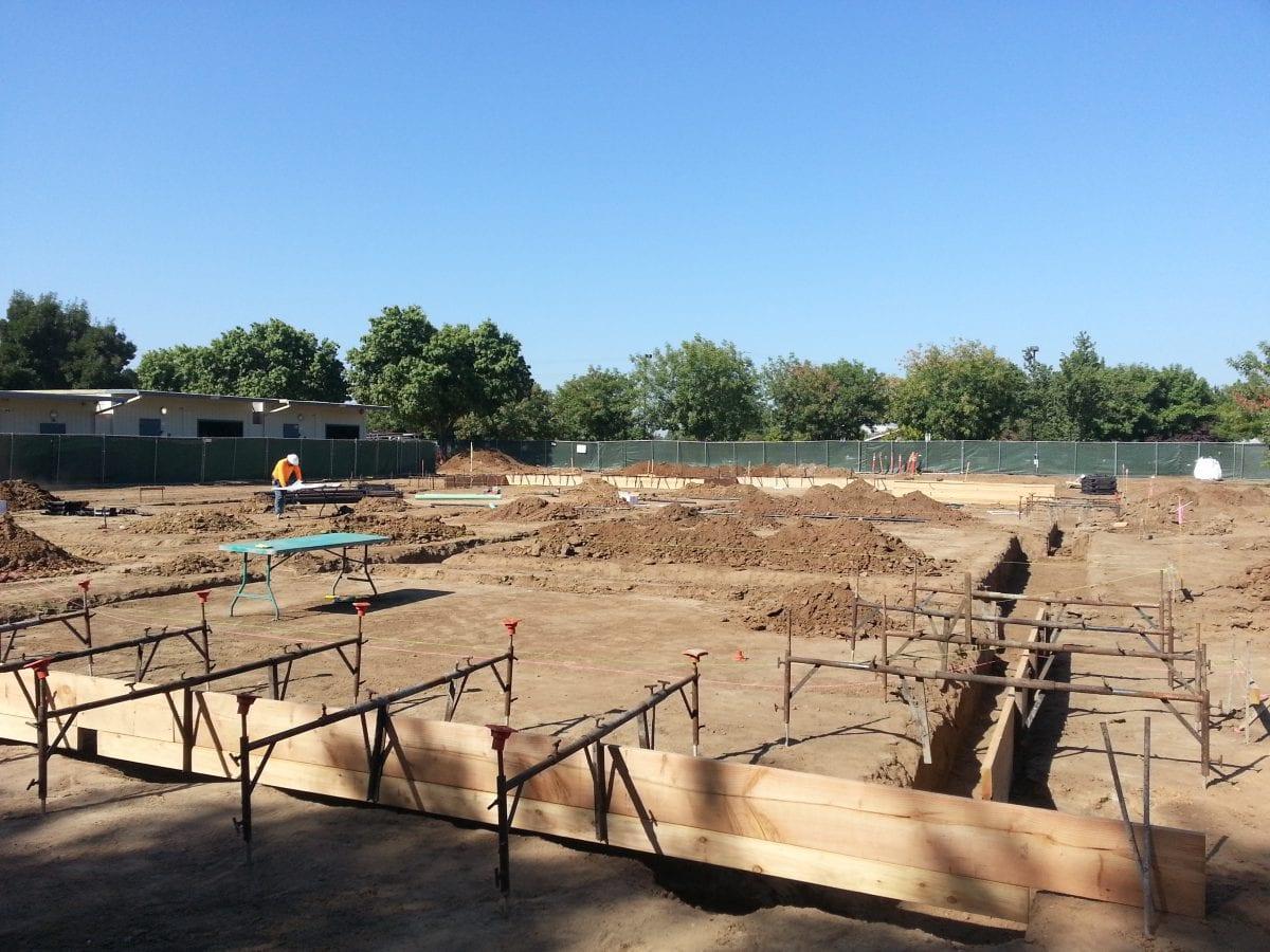 Beginning ground work 9/16